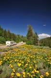 山消遣路风景通信工具 库存图片