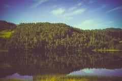 山湖岩石岸在有薄雾的秋天早晨 美好的自然挪威 在湖的反映 免版税库存照片