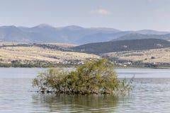 山湖的全景 库存照片