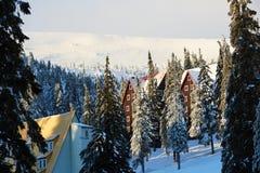 山滑雪场冬天风景照片 高冷杉木和用雪盖的瑞士山中的牧人小屋房子 假期和假日 免版税图库摄影
