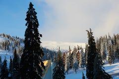 山滑雪场冬天风景照片 高冷杉木和用雪盖的瑞士山中的牧人小屋房子 假期和假日 免版税库存图片