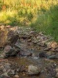 山滴下的小河水场面 免版税图库摄影