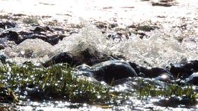 山瀑布,小河,河 水在阳光下飞溅在石头 股票录像