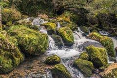 山瀑布 乔治亚,高加索 库存照片