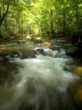 山热带瀑布 库存图片