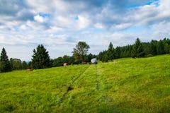 山牧场地 库存图片