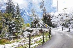 山用雪和绿色草甸盖的曲线路winte的 库存图片