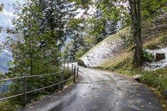 山用结霜的雪和绿色草甸盖的曲线路 免版税库存照片