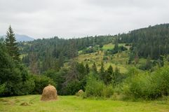 山的一个干草堆 免版税库存照片
