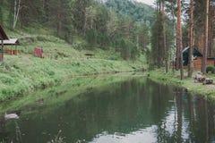 山的一个湖鳟鱼饲养的 图库摄影