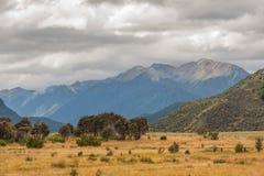 山的一个风景看法在新西兰/风景的 免版税图库摄影