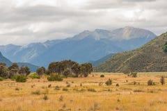 山的一个风景看法在新西兰/风景的 免版税库存照片
