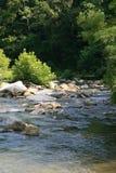 山的一条河 库存照片