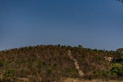 山的上面是光秃的岩石风景,并且rockpools在农村森林和它里提供周边地区incl的看法 库存照片