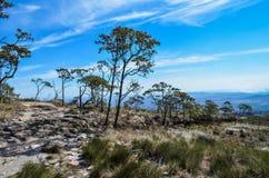 山的上面的看法告诉了鹰Peak  免版税图库摄影