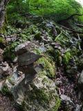 山的倾斜,报道用石头和青苔 在山的阴天 库存图片