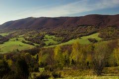 山的全景长满与绿草和棕色树 免版税图库摄影