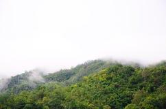 山的前面的森林在雾和低云彩的;Srinakarin水坝北碧泰国 免版税库存图片