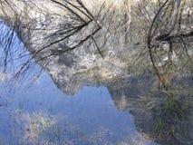 山的反射在浅水坑的 免版税库存图片
