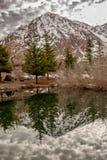 山的反射在Cajon del迈波火山里面的一个湖在一个小森林之间 图库摄影