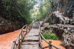 山的大叻,越南镇 免版税库存图片