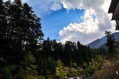 山的密集的森林 免版税库存照片