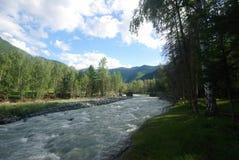 山的山河 潮流通过峡谷河 石头和岩石土地在河附近 图库摄影