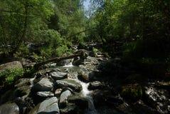 山的山河 潮流通过峡谷河 石头和岩石土地在河附近 美丽的山 免版税库存照片