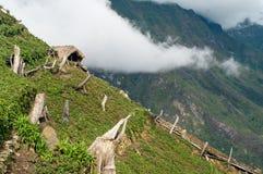 山的庭院在新几内亚 库存图片