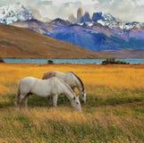 山的拉古纳Azul 库存图片