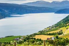 山的挪威乡间别墅在湖支持 库存图片