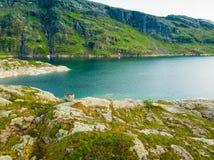 山的挪威湖 免版税库存图片