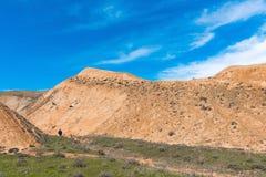 山的旅客 免版税库存照片
