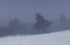 山的有雾的湖在日落在晚上 免版税库存照片