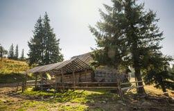 山的木老房子 具球果森林在一个晴天 免版税库存照片