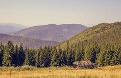 山的木老房子 具球果森林在一个晴朗的夏日 免版税库存图片