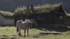 山的村庄, Herdal的农场,挪威 免版税库存图片