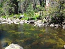 山的池塘 库存图片