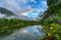 山的河,南方,新西兰10 免版税库存图片