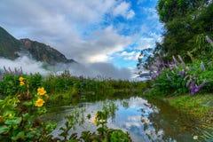 山的河,南方,新西兰9 库存图片