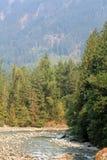 山的河 图库摄影
