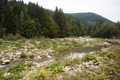 山的河 库存照片