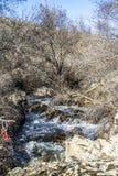 山的河 库存图片