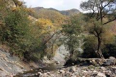 山的河 免版税库存图片