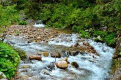 山的河 免版税图库摄影