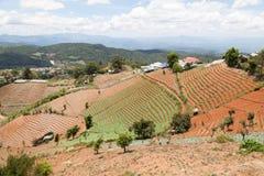 山的泰国村庄 库存图片