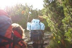 山的游人与背包 免版税库存照片