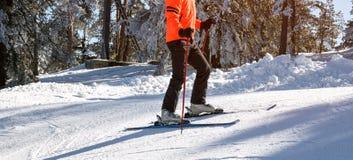 山的滑雪者 免版税图库摄影