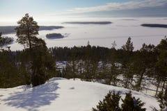从山的看法到多雪的浩瀚。冬天风景 库存照片