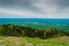 从山的看法,绿色夏天木头 免版税库存照片